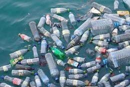 Plastic bottles destroying the ocean