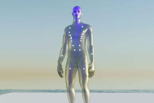 Central Nervous System Image